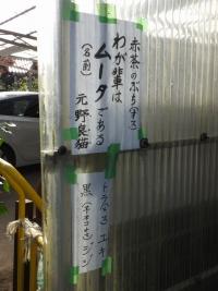 Kawaguchi20171126_13