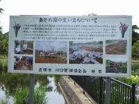 Asahi20190604_002