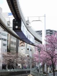 Chiba_mono20180324_28