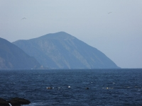Fukashima20190223_052