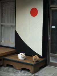 Fukashima20190224_049