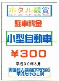 Hirasawa20180608_04