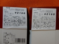 Hitachi20190308_03