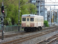Hitachinaka20180408_059