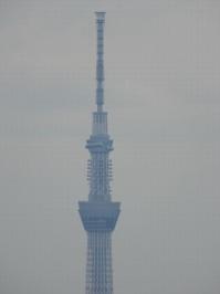 Ichikawa20190417_20