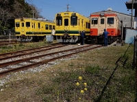 Isumi_rail20180325_22