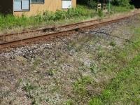 Isumi_rail20180604_03