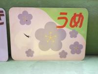 Isumi_rail20190330_24