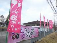 Katsuura20180224_01