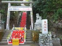 Katsuura20180224_11
