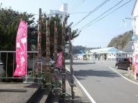 Katsuura20180224_21