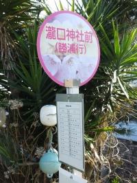 Katsuura20180224_64