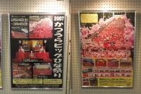 Katsuura20180224_79