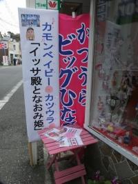 Katsuura_big_20190223_02