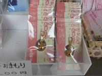 Katsuura_big_20190223_25