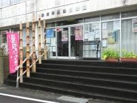 Katsuura_big_20190301_06
