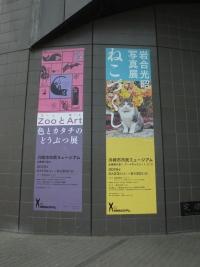 Kawasaki20190519_005