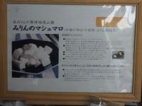 Ryutetsu20190501_051