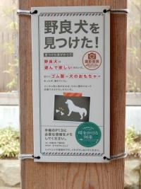 Tokikake20191201_052