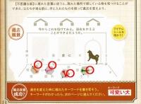 Tokikake20191201_058