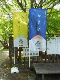 Yamaneko20190429_01