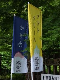Yamaneko20190623_01